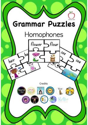 Homophones Puzzle
